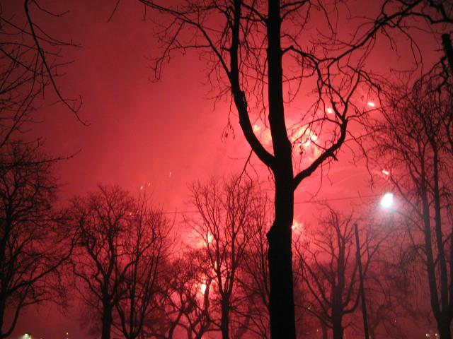 © Renate Egger. Feuerwerk/Fireworks. Vienna, Austria 2010