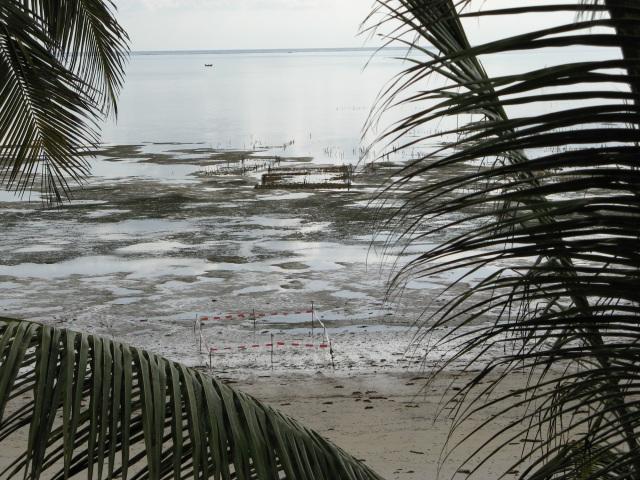 © Renate Egger. Paradies/Paradise. Absperrband, Holzstäbe/Barrier tape, wooden sticks. Jambiani, Zanzibar, Tanzania, Africa 2011