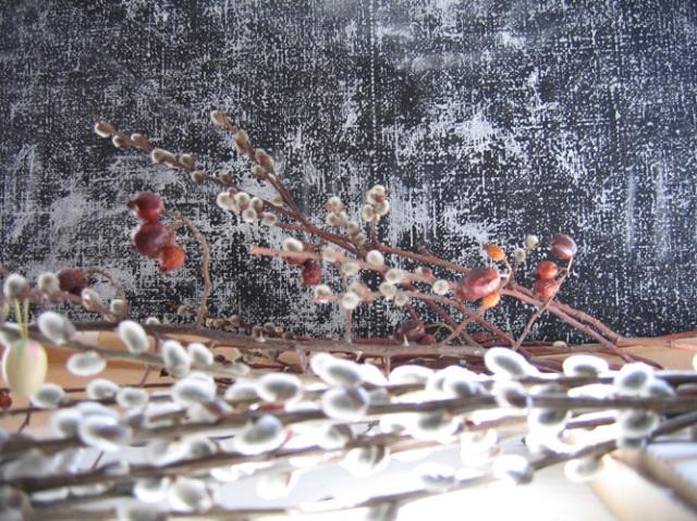 """© Renate Egger. Herbarium """"Palmkätzchen, Hagebutte""""/Herbarium """" catkin, rose-hip"""", 2008. Installation, photography."""