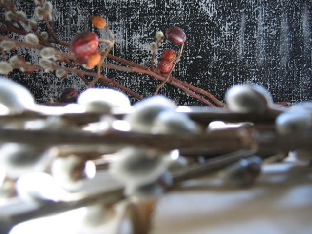 """© Renate Egger. Herbarium """"Palmkätzchen Hagebutte""""/Herbarium """" catkin rose-hip"""", 2008. Installation, photography."""