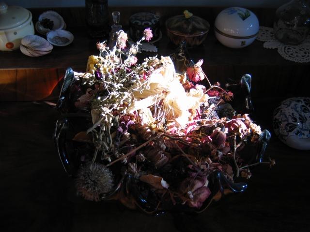 Renate Egger. Herbarium Blumen/Herbarium flowers, 2006. Installation, Fotografie/Installation, photography