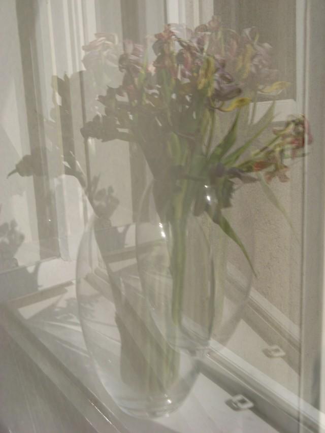 © Renate Egger. Spiegelung. Tulpen/Reflection. Tulips. 2011 Installation, Fotografie/Installation, photography