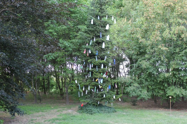© Renate Egger. Plastikbaum/Plastic tree, 2012. Installation, Plastikflaschen, Baum, Fotografie, Video/Installation, plastic bottles, tree, photography, video. Trans Pulmina. Artfarm Pilastro. Pilastro di Bonavigo, Verona, Italy