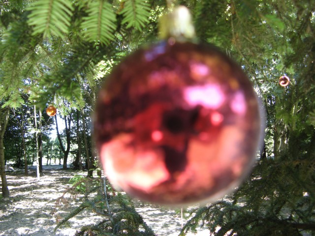 © Renate Egger. Weihnachtsbaum/Christmas tree, 2011. Installation, Weihnachtskugeln, Baum, Fotografie, Video/Installation, christmas balls,  tree, photography, video. M`Illumino D`Immenso. Artfarm Pilastro. Pilastro di Bonavigo, Verona, Italy