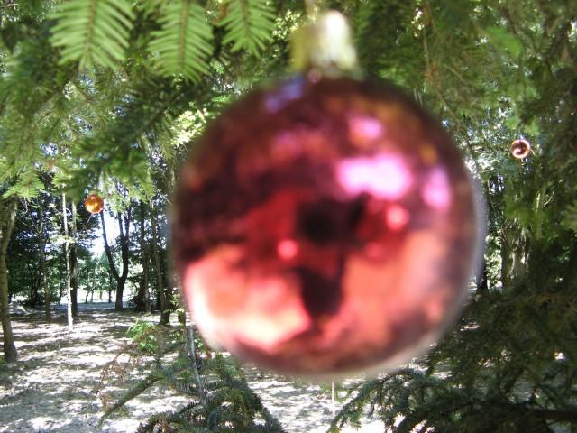 © Renate Egger. Weihnachtsbaum/Christmas tree, 2011. Installation, Weihnachtskugeln, Baum, Fotografie, Video/Installation, christmas balls,  tree, photography, video. M`Illumino D`Immenso. Artfarm Pilastro. Pilastro di Bonavigo, Verona, Italy