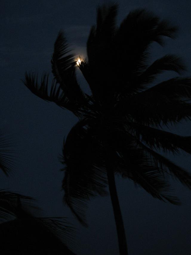 © Renate Egger. Indian Ocean. Jambiani, Zanzibar, Tanzania, Africa 2011