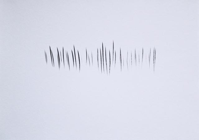 © Renate Egger. Strukturen/Structures II, 2011. Chinesische Tusche auf Papier/Chinese ink on paper, 24x34 cm