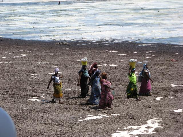 © Renate Egger. Licht/LIght, II. Jambiani, Zanzibar, Africa 2015