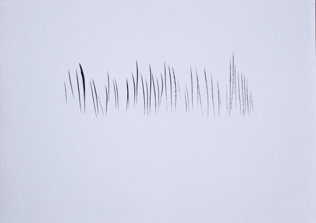 © Renate Egger. Strukturen/Structures I, 2011. Chinesische Tusche auf Papier/Chinese ink on paper, 24x34 cm